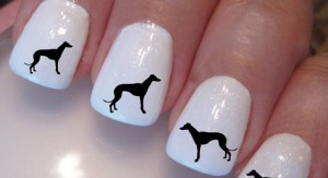 nagelstickers windhond